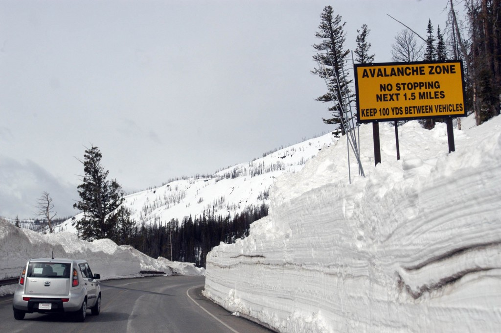 Yellowstone National Park spring travel brings solitude, quiet